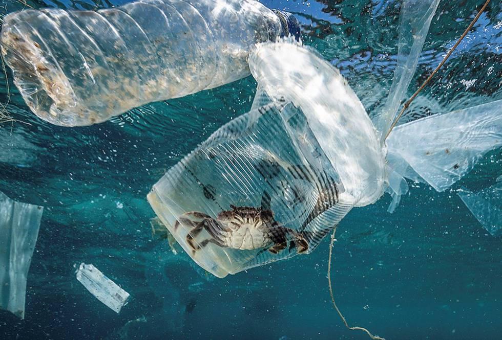 La ONU insta a los países a reducir los microplásticos en los océanos