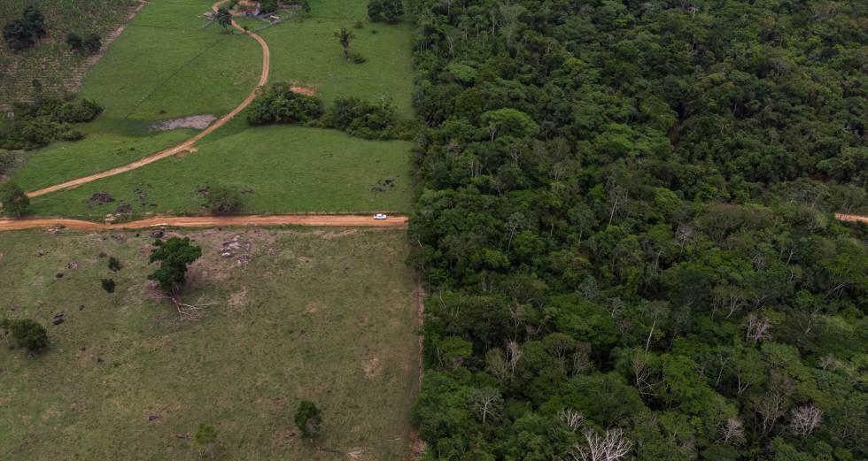 Territorio indígena de los Surui, en el Estado de Rondonia, en la Amazonia.