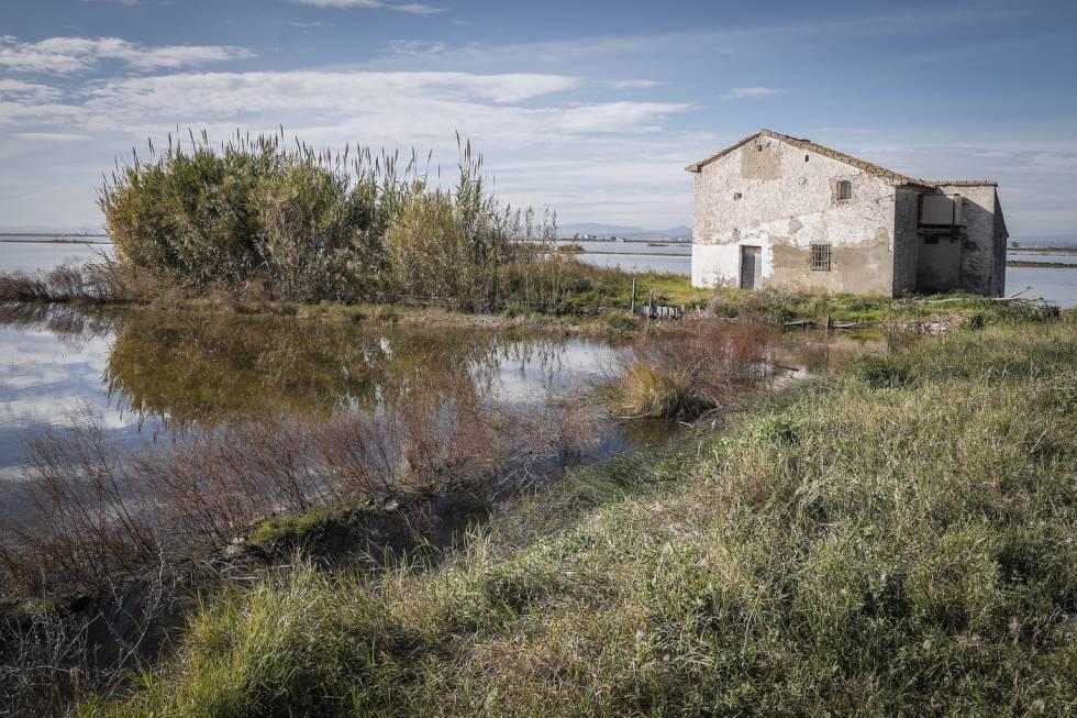 """La Fiscalía investiga el """"alarmante"""" descenso del nivel de agua en la Albufera de Valencia"""
