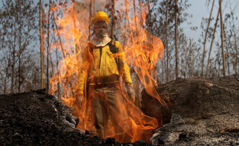 incendios amazonas