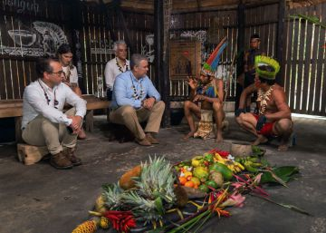 Sete países amazônicos acertam uma agenda contra a crise ambiental