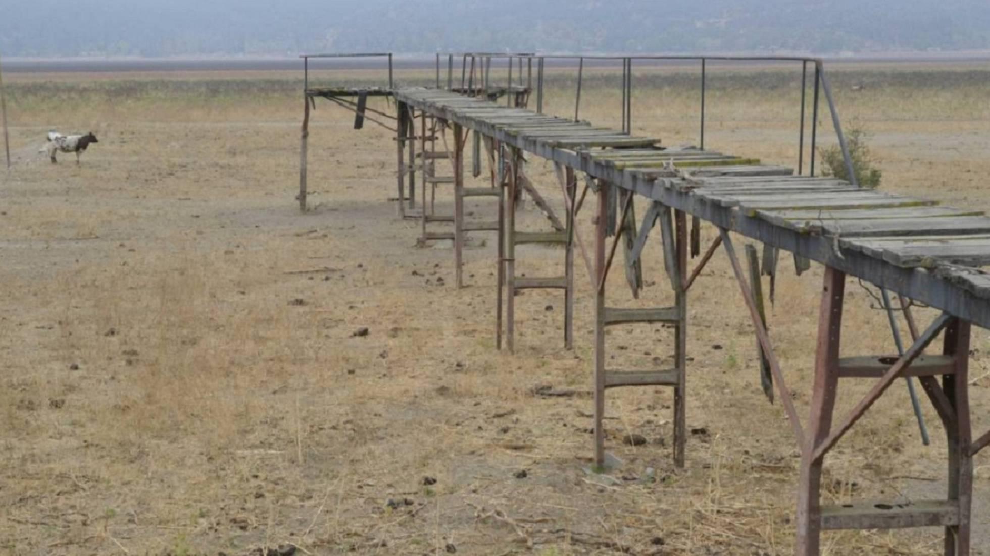 Pérdidas por mil millones de dólares en Chile por sequía