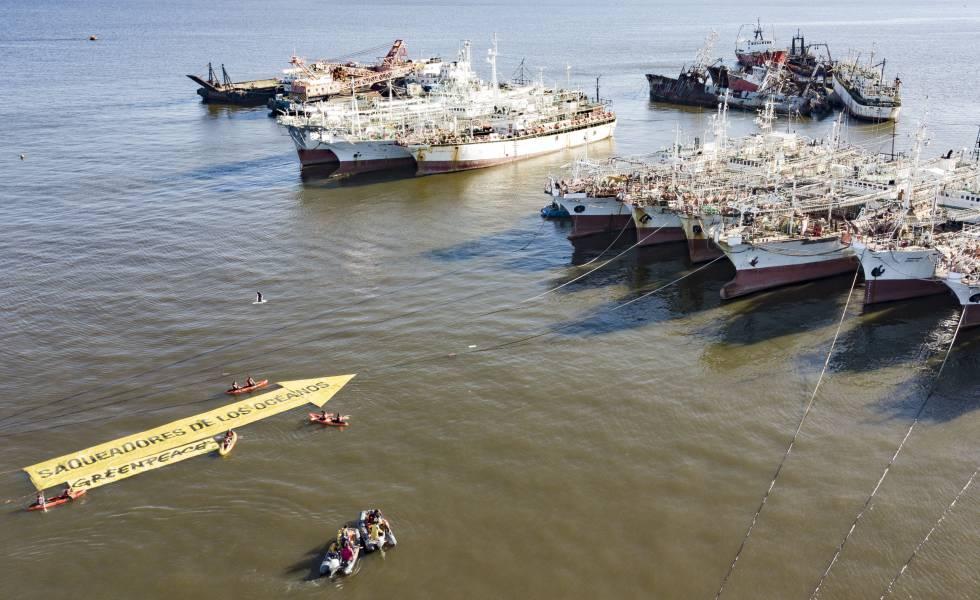 El mar argentino, víctima de la sobrepesca | Sociedad | EL PAÍS