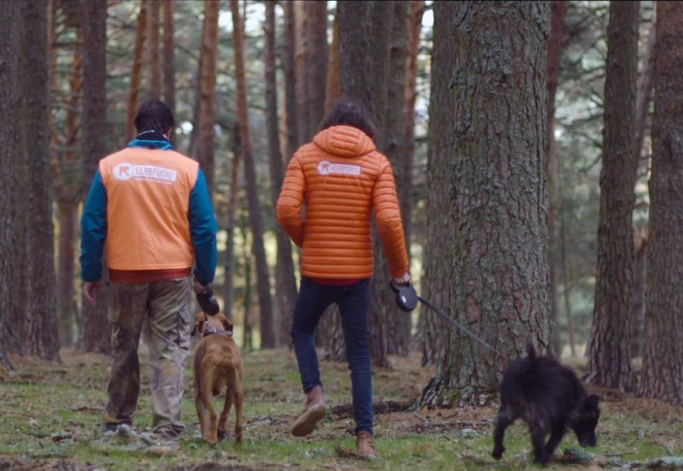 Nacho Paunero paseando con dos animales de El Refugio.
