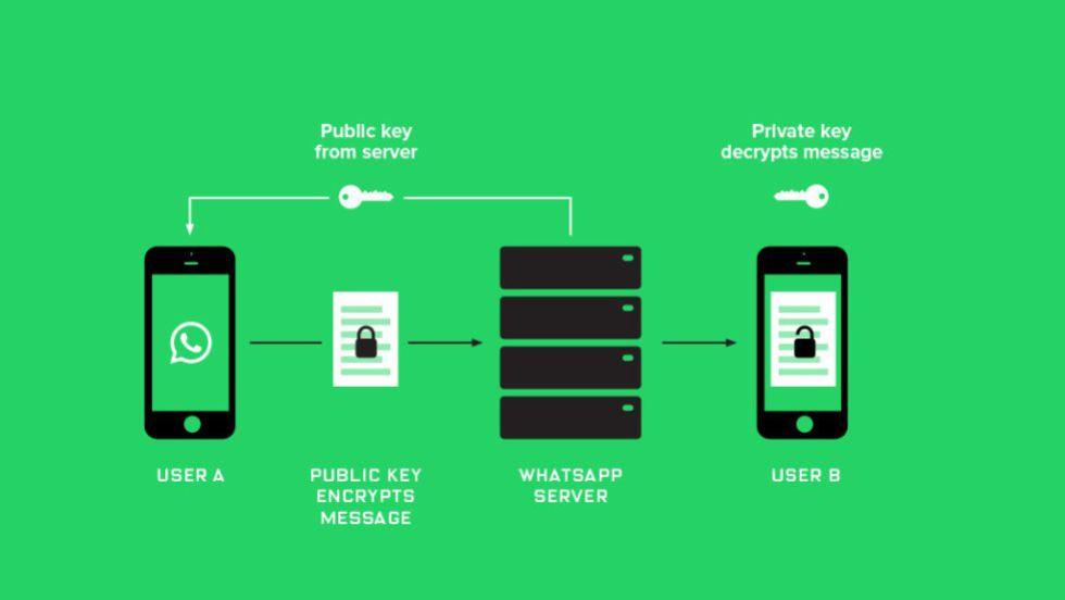 O que é a criptografia no WhatsApp e porque é tão importante