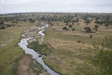 El río Tarangire es una fuente de agua esencial durante la estación seca.