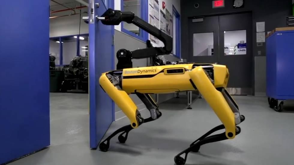 El robot que ha aprendido a abrir puertas para ayudar a sus 'amigos'