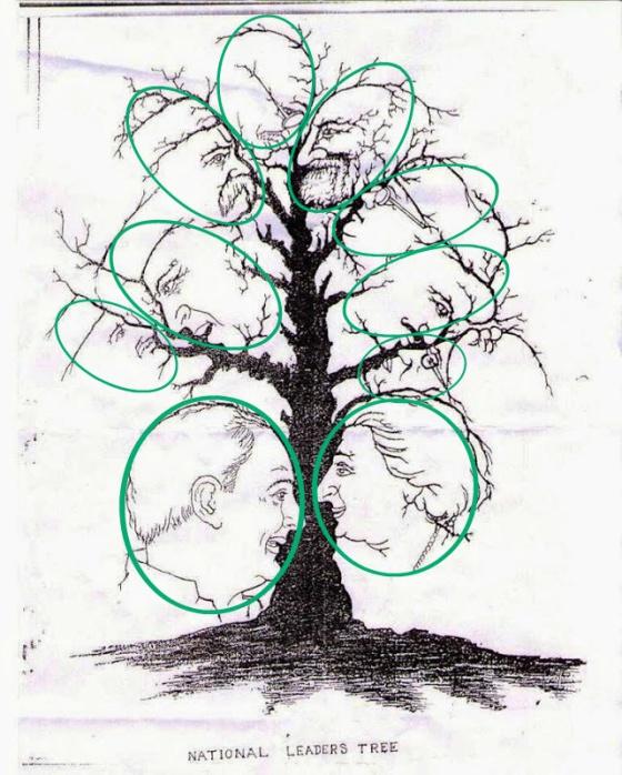 Cu ntas caras eres capaz de ver en este rbol verne el for Que significa dibujar arboles secos