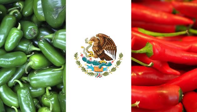 Por nos mexicanas