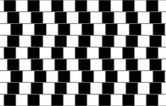 15 ilusiones ópticas que harán que no vuelvas a fiarte de tus ...