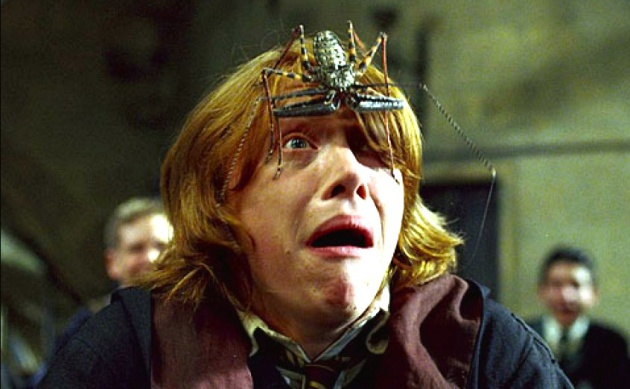 Ron Weasley, de las películas de 'Harry Potter', pasándolo regular