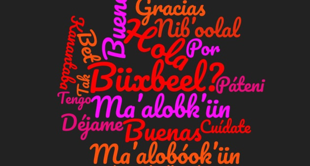 Estas 17 Frases Te Animaran A Estudiar Maya Verne Mexico El Pais