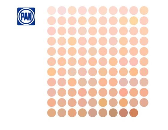 Así se ven los tonos de piel de 500 diputados mexicanos a partir de sus fotos en internet