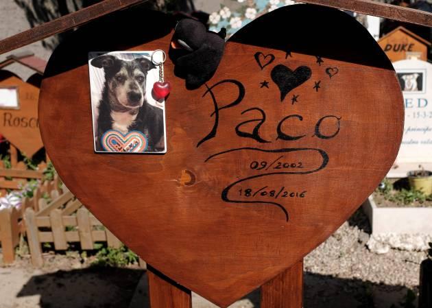 Cemitério de animais de Casa Rosa (Itália). ALBERTO PIZZOLIAFPGetty Images