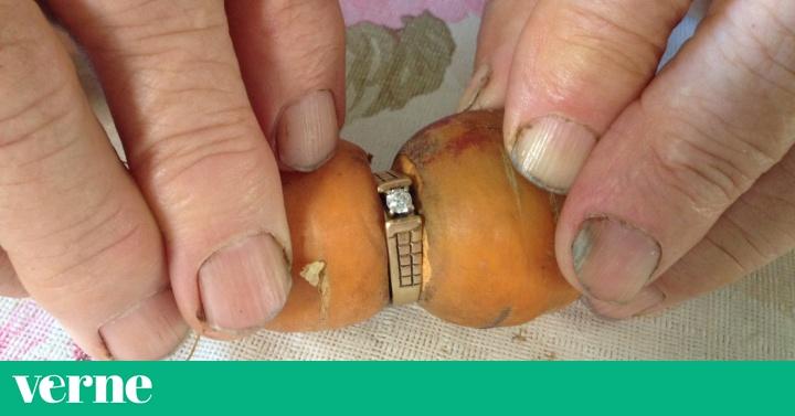 Un Anillo Perdido Aparece Otra Vez En Una Zanahoria Verne El Pais En primera instancia, una zanahoria cruda tiene unas 40 calorías por cada 100 gramos. un anillo perdido aparece otra vez en